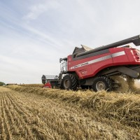 Landbouwwerken Joris Blomme in het graan.
